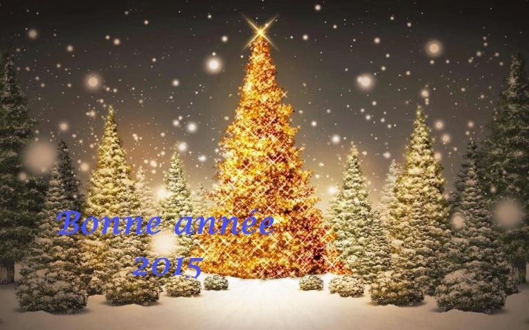 happy-new-year-2014-ukraine